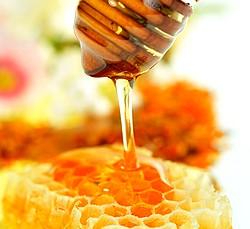 мед для капха доши