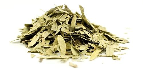 Листья сенны как принимать от запора
