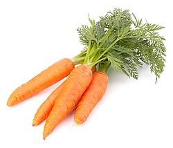 морковь для очищения крови