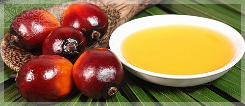 кокосовое масло и пальмовое одно и тоже