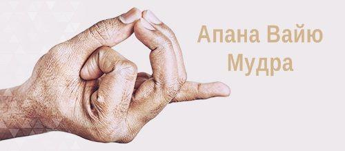 Апана Вайю Мудра - Мудра сердца