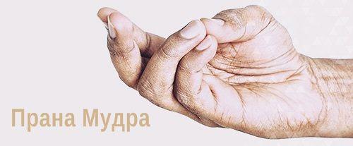 Прана Мудра - исцеляющие мудры для сердца